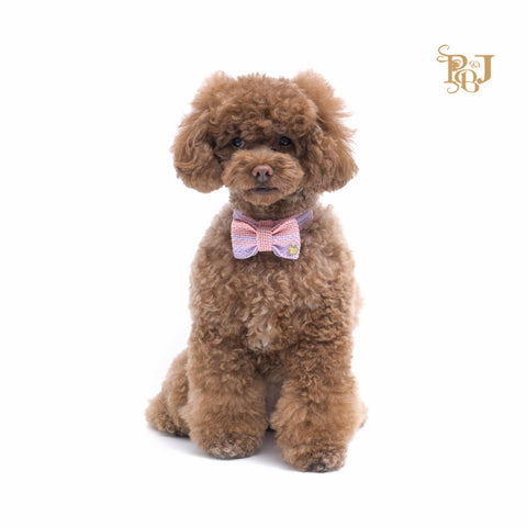 P. Bee & Joanne - Hadley Bow Tie Collar - Pink with Violet Stripes - img 1