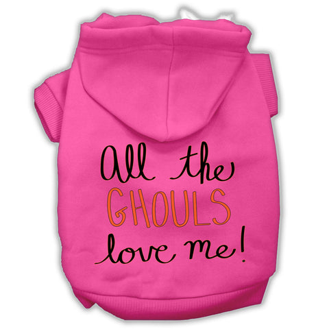 All The Ghouls Screenprint Dog Hoodie