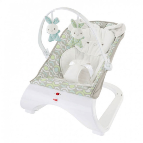Fisher-Price Babies Fisher-Price Deluxe Comfort Curve Bouncer