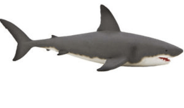Mojo Toys Great White Shark