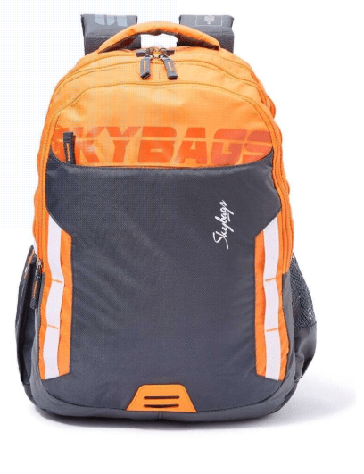 Skybags Back to School Figo Extra Casual Backpack - 36 Liter, 49 cm