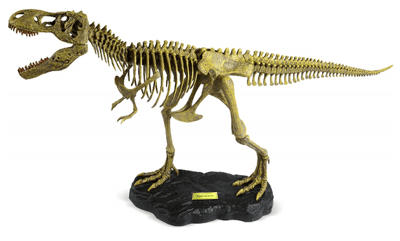 UNCLE MILTON Toys T.Rex Replica Skeleton-91082