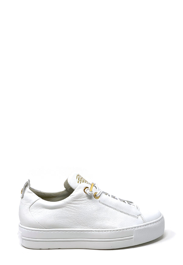 5017-008 Low Top Sneaker | White Gold