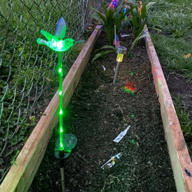 Solar WindyWing Garden Stake Set of Cardinal, Hummingbird and Blue Bird with Colored LED Lights, 4 by 27 Inch