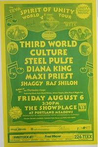 Third World Culture Steel Pulse Reggae Concert Poster