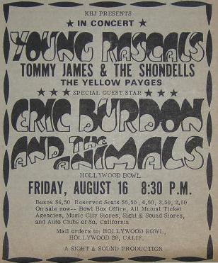 Young Rascals Tommy James Eric Burdon Concert Poster Type Ad
