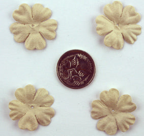 Beige 2.5cm Single flower