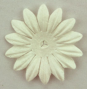 White 4cm Single flower.