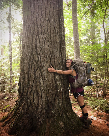 woman hiker with backpack hugging a tree with large diameter in a forest - tree appears to be pine with its bark