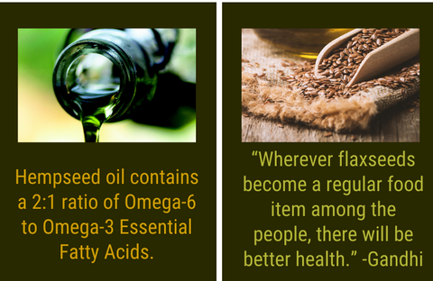 vegan sources of omega-3 and omega-6 fatty acids