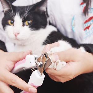 Pet Nail Clipper Scissors Pet Dog Cat Nail Toe Claw Clippers Scissors Trimmer Grooming Tools for Animals Pet Supplies