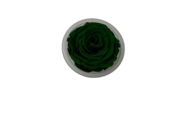 Green Forever Rose  DIY Projects | Preserved Flower | Eternity Rose | Rose Decor Party | Floral arrangements