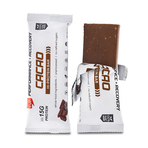 Organic Sprouted Cacao Plant Protein Bars Pea Protein and Sacha Inchi Protein