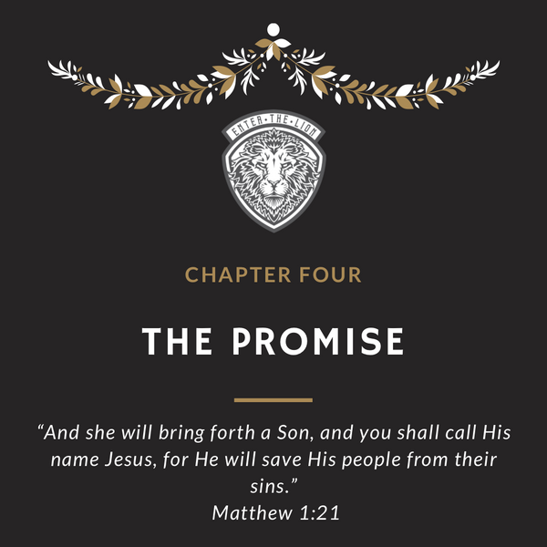 Weekly Advent: The Promise