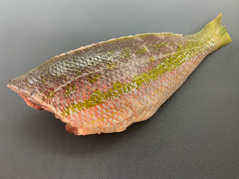Whole Yellowtail Snapper