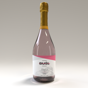 BUSL - Cherry Cider - (Cerasus) - 750mL