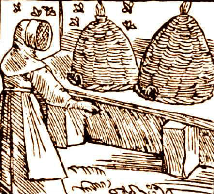 middle age antiquity mad honey beekeeping history of bee