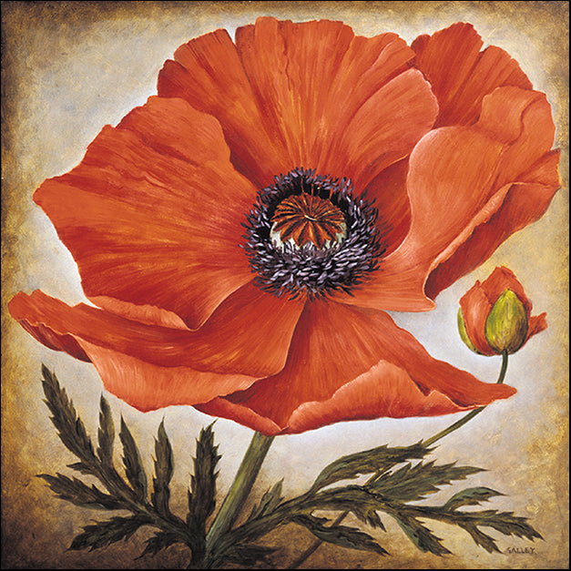 10343gg Poppy I, by Joyce Galley, available in multiple sizes