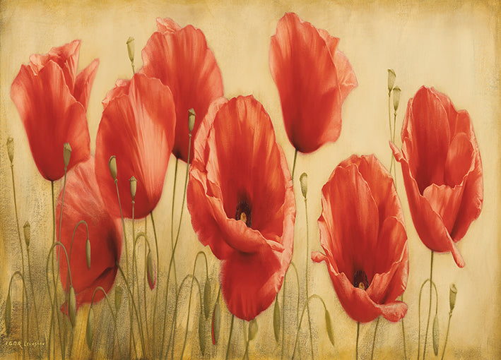 12526gg Poppies Grace I , by Igor Levashov, available in multiple sizes