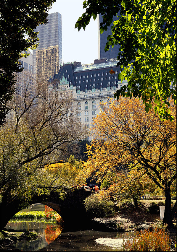 13545710 Central Park New York, available in multiple sizes