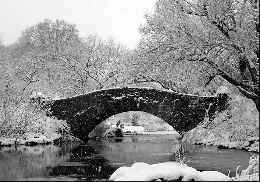 13545738 Central Park New York in the snow, available in multiple sizes