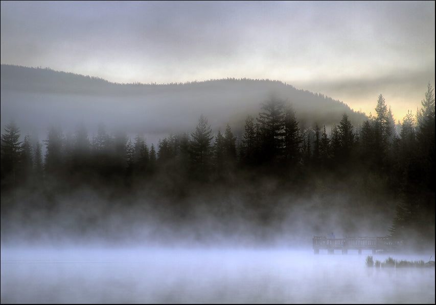 14727281 Foggy morning , available in multiple sizes