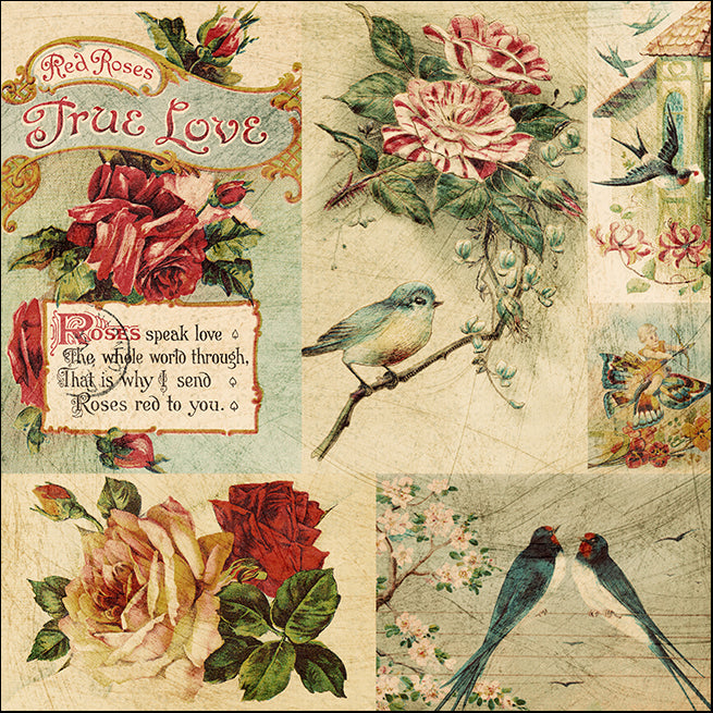 16287550 Vintage birds, available in multiple sizes