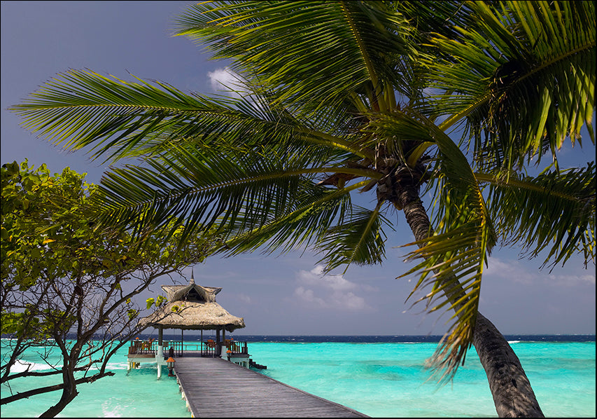 17773406 Maldives , available in multiple sizes