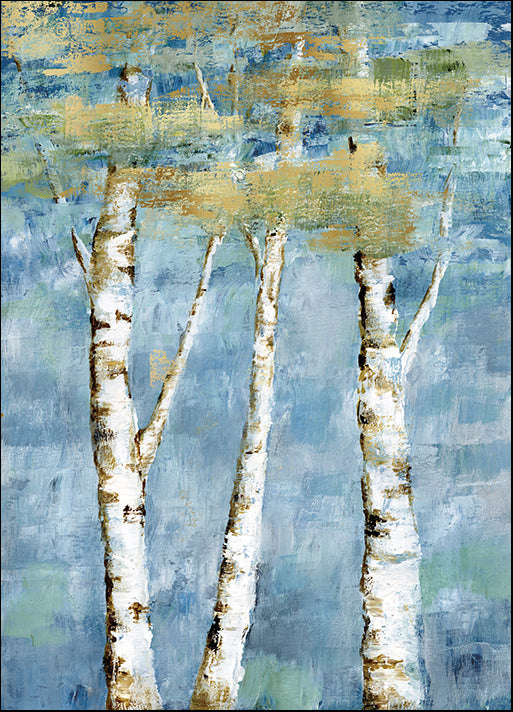 17978gg Shimmering Birch I, by Nan, available in multiple sizes