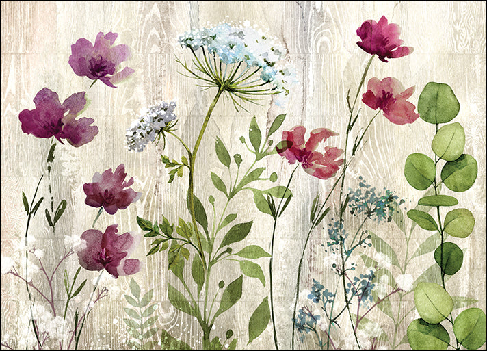 19767gg Meadow Flowers I, by Conrad Knutsen, available in multiple sizes