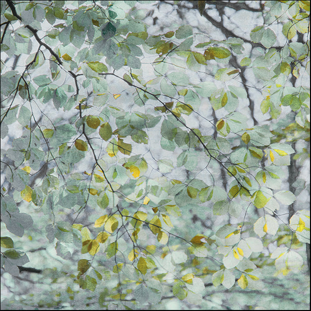 19968gg Dancing Leaves, by Irene Weisz, available in multiple sizes