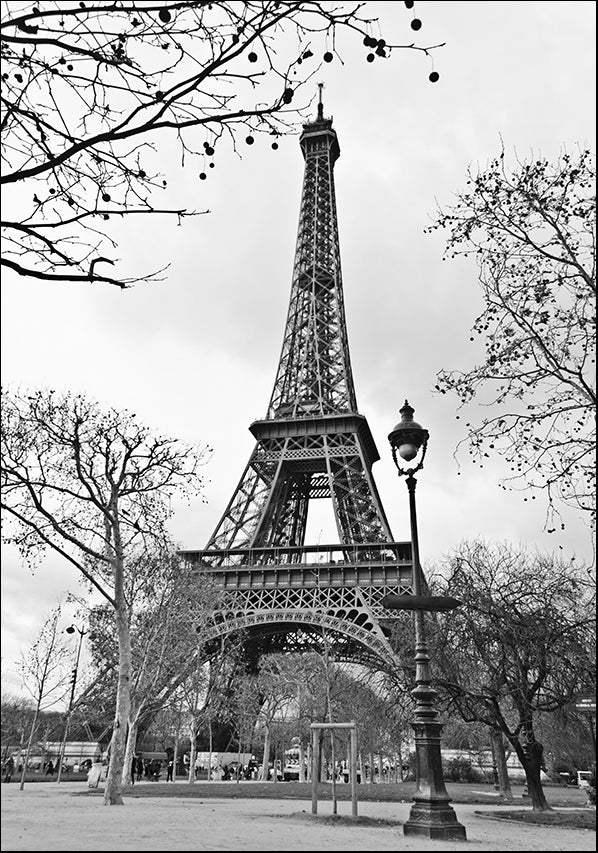 22365304 Eiffel Tower Black & White, available in multiple sizes
