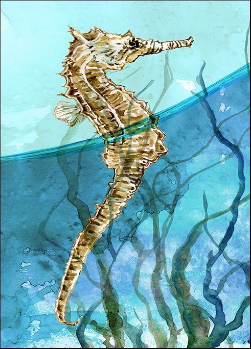 41877gg Delray Seahorse I, by Carol Robinson, available in multiple sizes