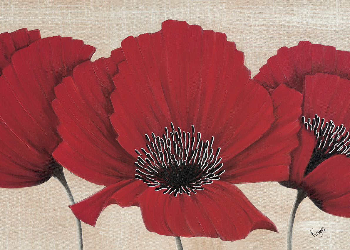 49307 MA Red Poppy, available in multiple sizes