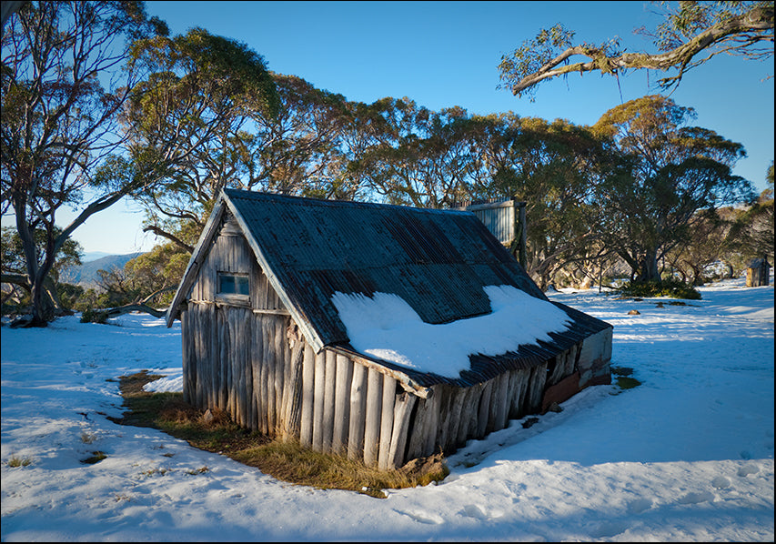 9687629 Wallaces Hut in snow, available in multiple sizes