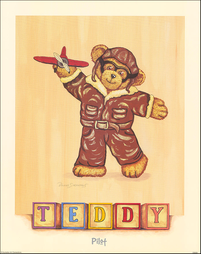 AAC DS009 Pilot Teddy by Daniel Sarantidis multiple sizes on paper