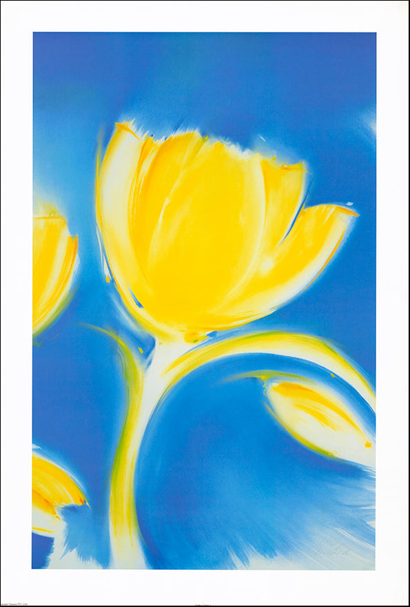 AAC JP001 Gabby's Tulip 1 by Jennifer Penglaze 61x90cm on paper