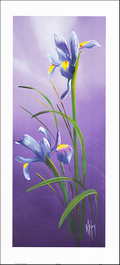 AAC KF038 Wild Irises 2 by Karen Foley 42x91cm on paper
