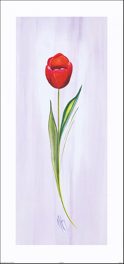 AAC KF053 Tulip Red I by Karen Foley 37x78cm on paper