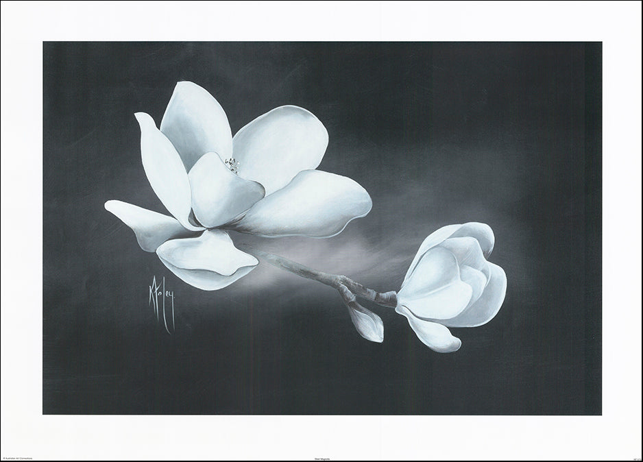 AAC KF073 Steel Magnolia by Karen Foley 91x65cm on paper