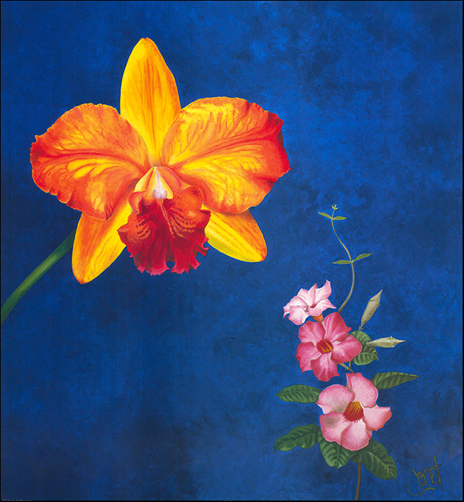 AAC WJ005 Floral Calm 3 by Janet Wilson multiple sizes on paper