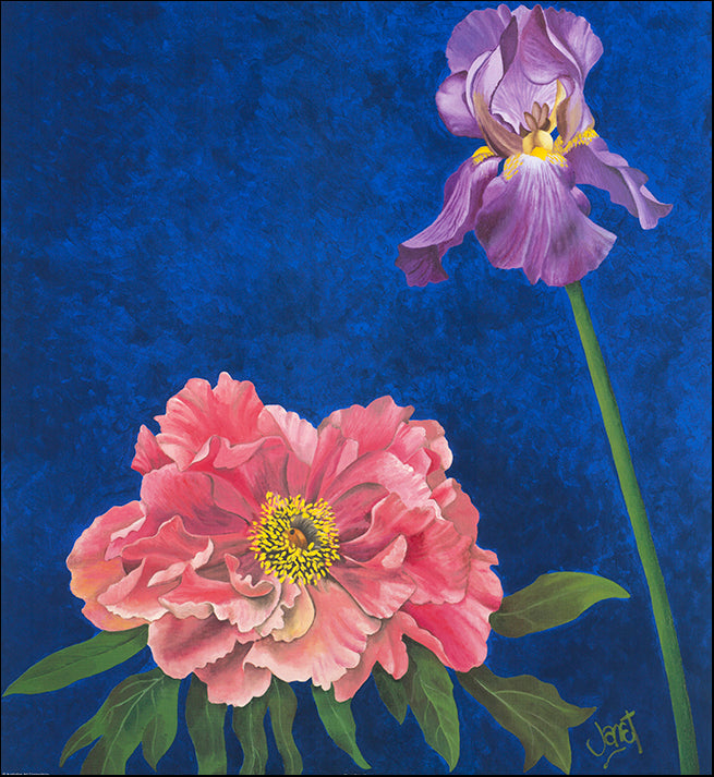 AAC WJ006 Floral Calm 4 by Janet Wilson multiple sizes on paper