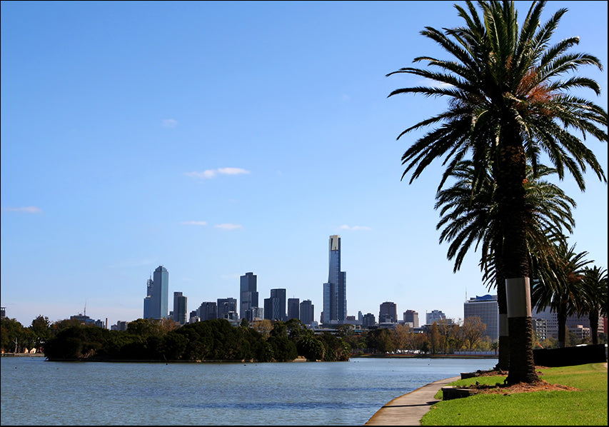 AADT82173350 Melbourne from Albert Park Lake, available in multiple sizes