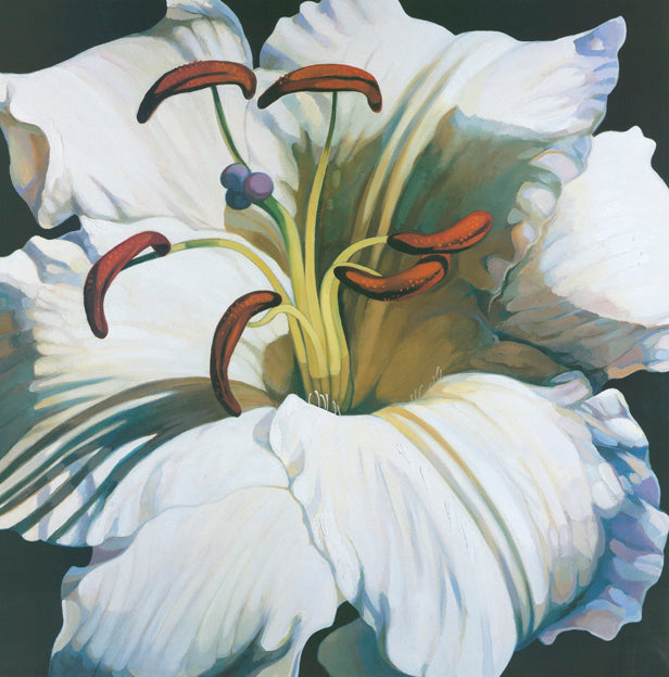 AW FF768 Frances Fussell 70x70cm on paper, November Lillies 2