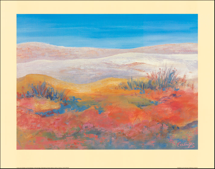 AW RE25 Dunes and Grasses by Rita Esslinger 77x61cm