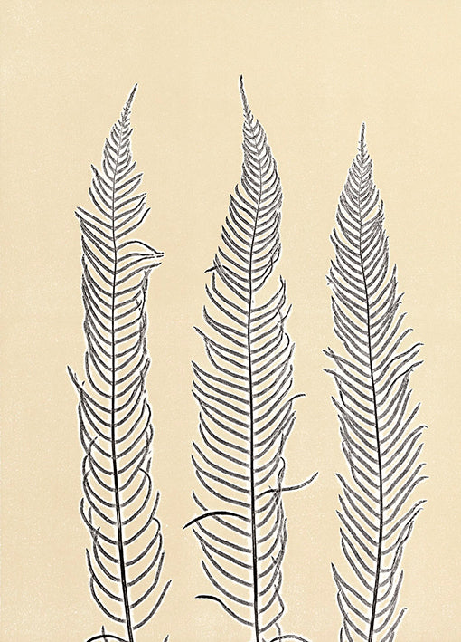 85546 Indigo Fern 2, by Briggs, available in multiple sizes
