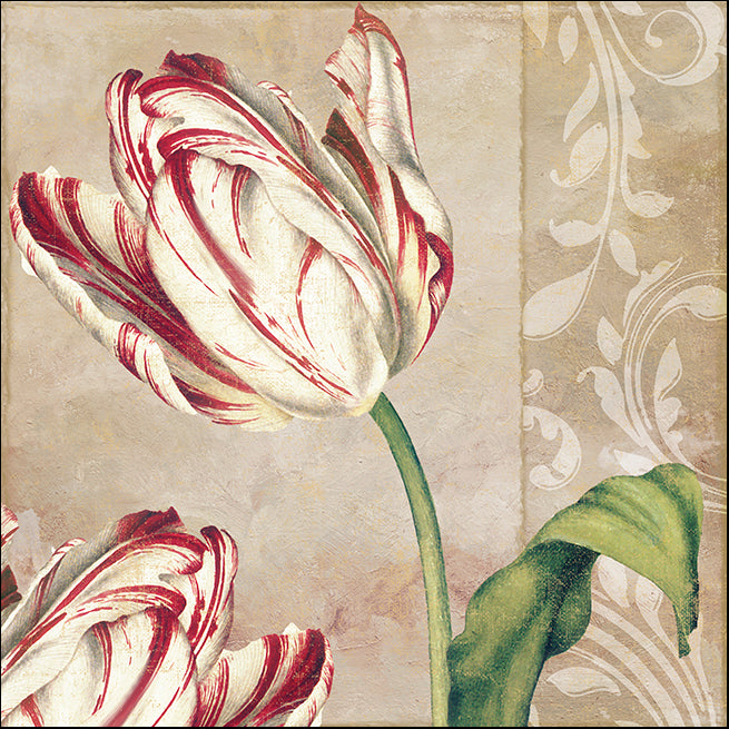 COLBAK114627 Classic Tulips I, available in multiple sizes