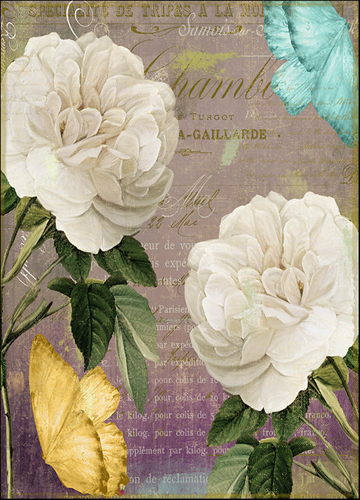 COLBAK136322 White Roses, by Color Bakery, available in multiple sizes
