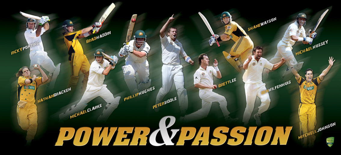 Cricket Power and Passion 100x45cm paper - Chamton