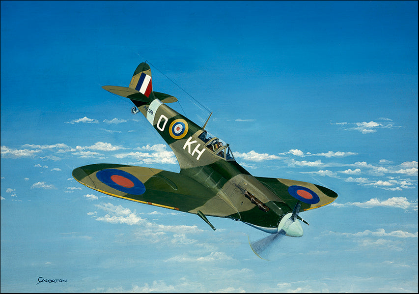 DDFA 10200 Supermarine Spitfire Fighter Plane WW2, available in multiple sizes